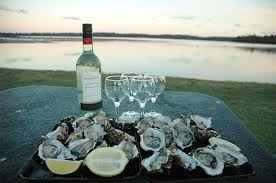 Oysters paired with wine