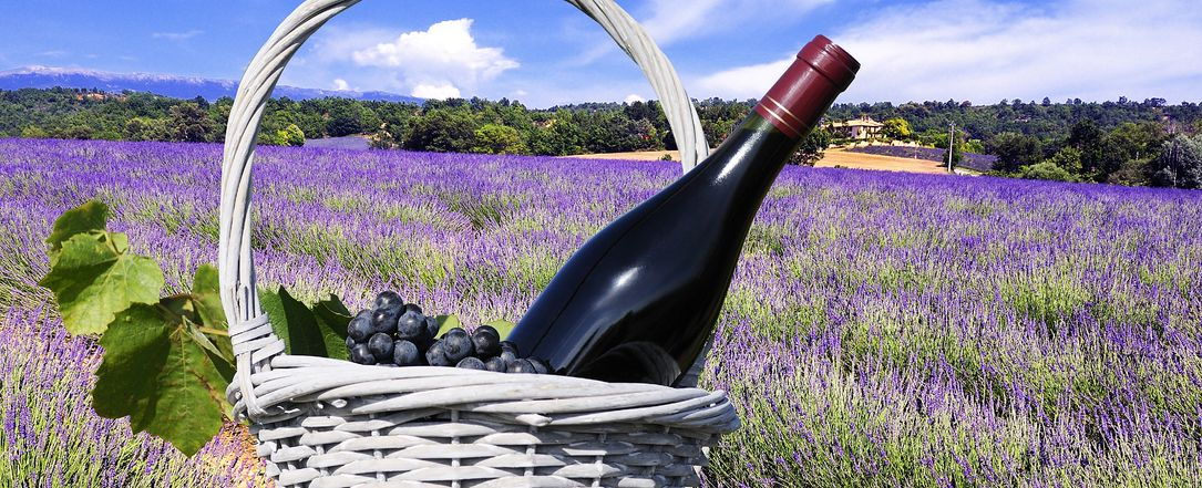 Discover the Dry Rose Wines of Provence this Summer