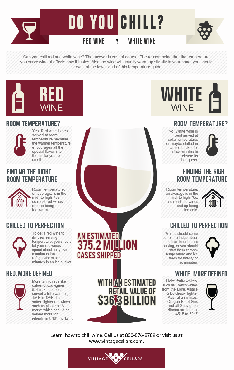 Do You Chill Wine Info Infographic